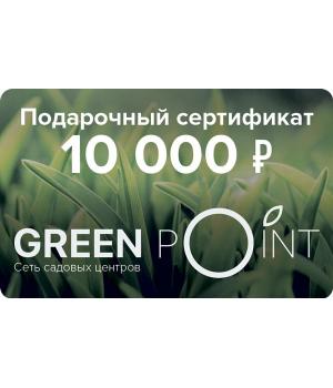 Сертификат номиналом 10000р.